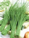 Chives-Broad-Leaved-Plant