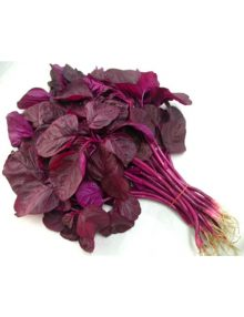 18-amaranth-all-red--2-