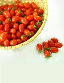 Cherry Tomato Red Ruby 2