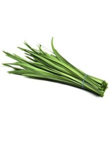 Garlic Chives SC