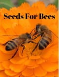 SeedsForBees