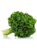 Curly Parsley SC