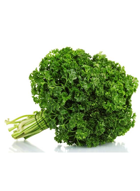 curly parsley seeds malaysia wht wellgrow seeds