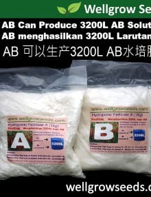 2kg AB Fruity Hydroponic Fertilizer