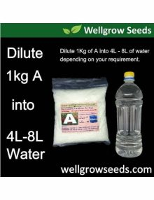 dilute A into water