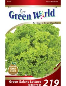 219-Green Galaxy Lettuce