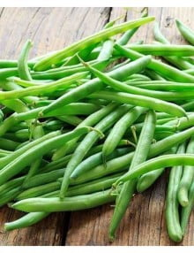 blue-lake-bush-bean