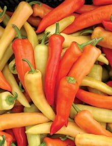 pepper-hungarian-hot-SC