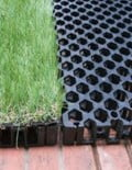 Drain cell use for rooftop garden