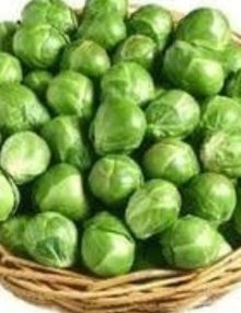 brussel-sprouts-long-island_sc