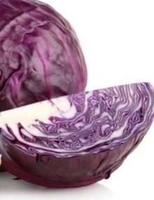 cabbage-red-acre_sc-1