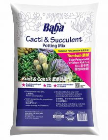 baba-cacti-succulent-potting-mix-7-ltr_2
